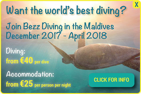 diving-in-maldives