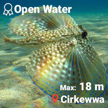 Amphores diving malta