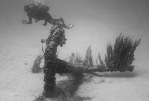 cirkewwa anchor