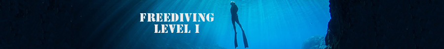 freediving-level-I--900x100