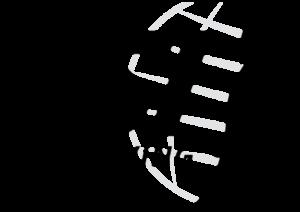 freediving_logo
