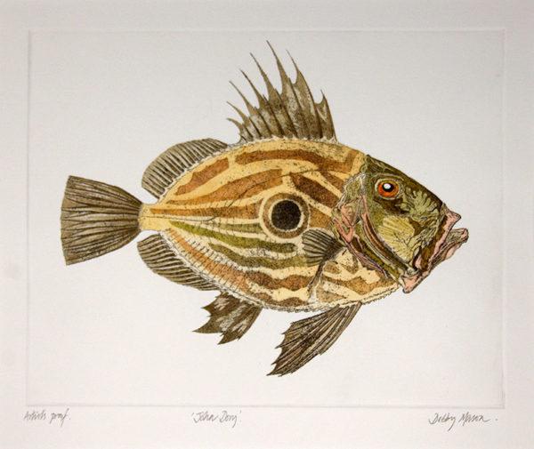 john-dory-fish